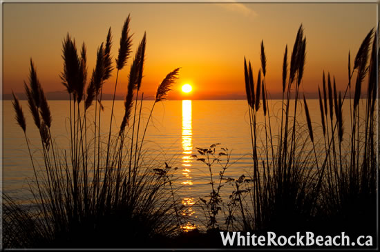 https://whiterockbeach.ca/wp-content/uploads/2011/12/white-rock-04.jpg