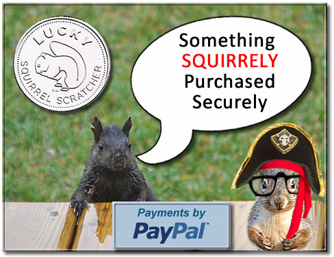 squirrely-ad-02