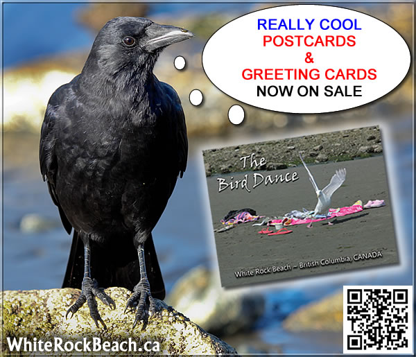 postcards-ad-really-OOL